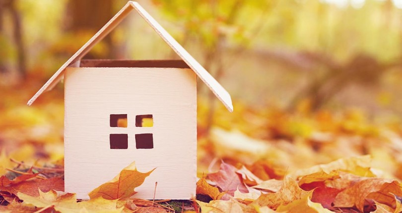 Osprey Property Autumn Market Update – Property Market Remaining Calm